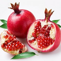 Pomegranate by Perfumer's Apprentice