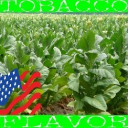 American Tobacco - USA Blend by Flavor West