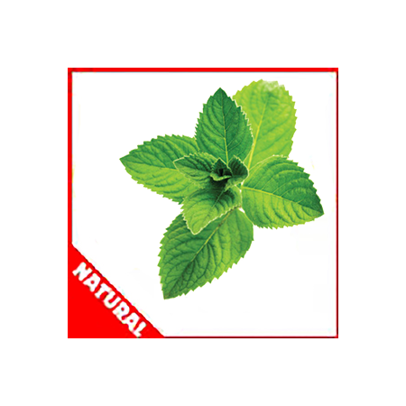 Spearmint (Natural) by Flavor West
